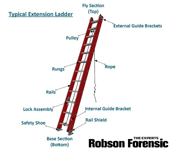 Ladder Injuries Expert Introduction To Ladder Anatomy Accident