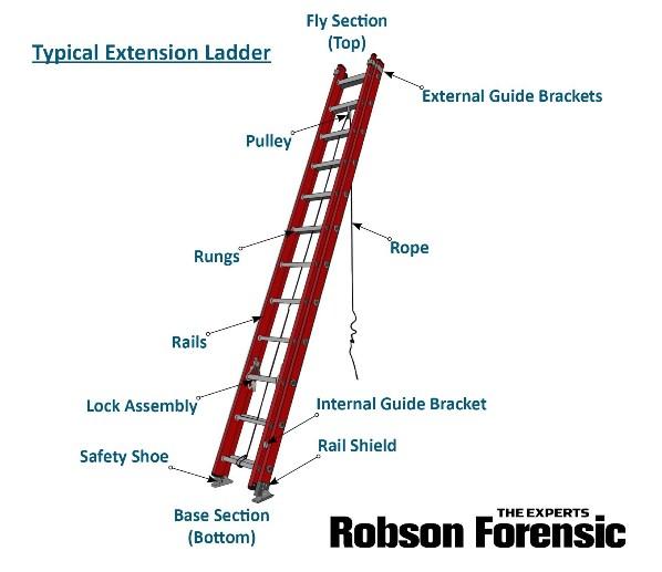 Ladder Injuries Expert Introduction To Ladder Anatomy